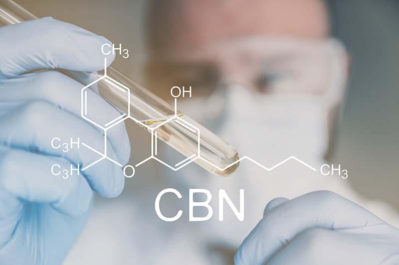 cannabinol cbn